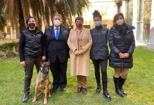 La DPZ y la asociación Escan ponen en marcha un proyecto de terapia emocional con perros para mujeres maltratadas